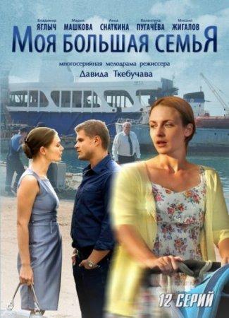 Скачать сериал Моя большая семья (2012)