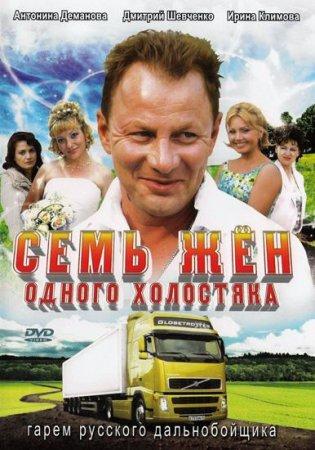 Скачать сериал  Семь жен одного холостяка (2009)