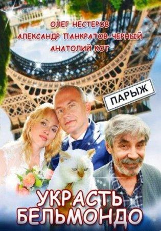 Скачать сериал Украсть Бельмондо [2012] TVRip