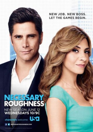 Скачать сериал  Необходимая жестокость / Necessary Roughness - 3 сезон (2013)