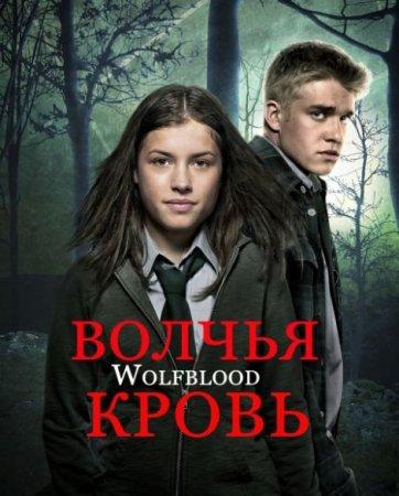 Скачать сериал  Волчья кровь / Wolfblood  - 2 сезон (2013)