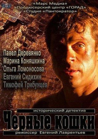 Скачать сериал Черные кошки [2013]