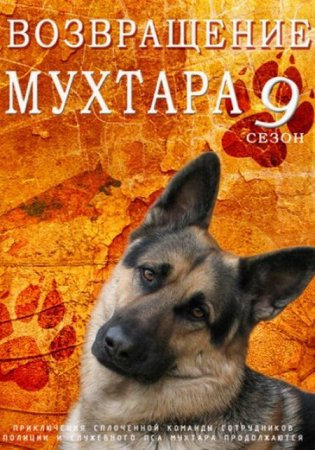 Скачать сериал  Возвращение Мухтара 2 - 9 сезон (2014)