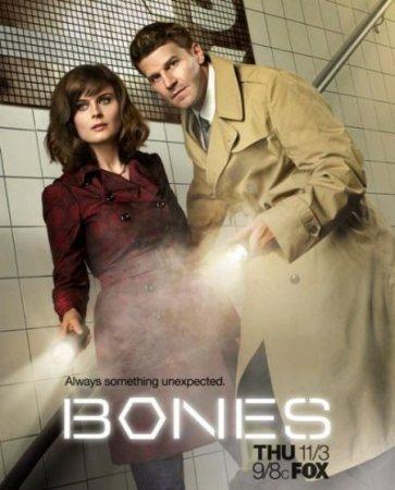 Скачать сериал  Кости / Bones - 9 сезон (2013)