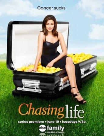 Скачать сериал Погоня за жизнью / Chasing Life - 1 cезон (2014)