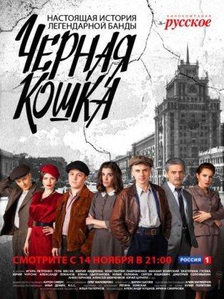 Скачать сериал Черная кошка (2016)