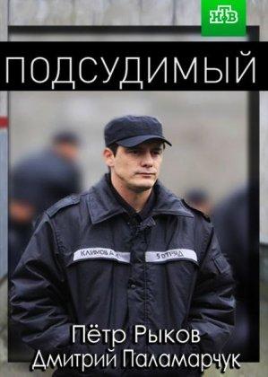 Скачать сериал Подсудимый (2019)